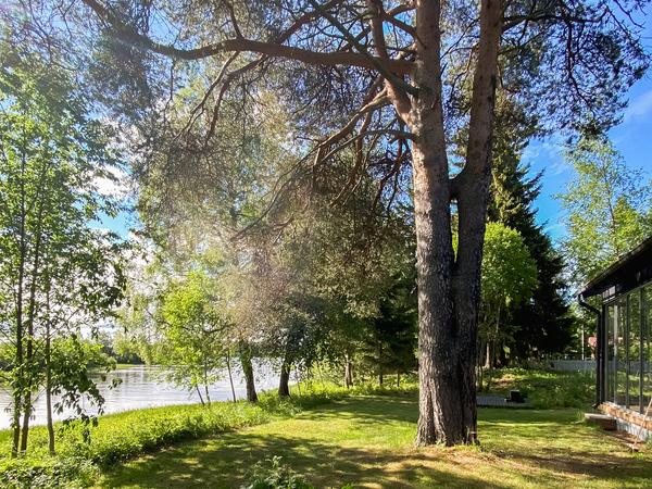 Villa Hietasaari Kuva 8
