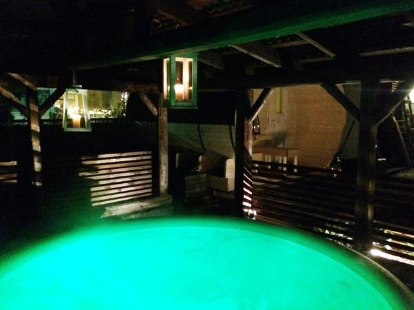 Sauna Villa Kuva 3