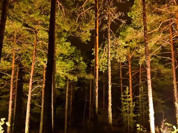 Itärannan Sauna Kuva 5